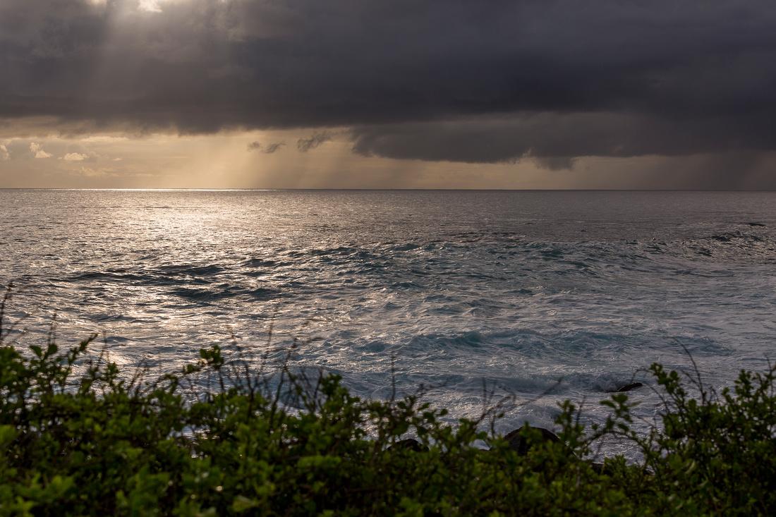 Galapagos (16 of 43)